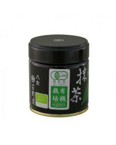 Matcha Hoshino 40g, grüner Tee, Bio Matchapulver