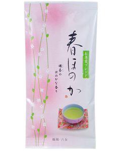 Sencha Haru Honoka grüner Tee Japan